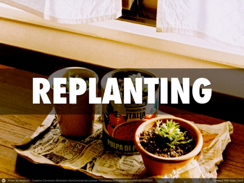 Replanting Requirements.001